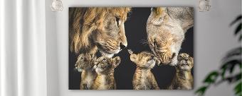 MyAnimalFamily - Jouw gezin als dieren